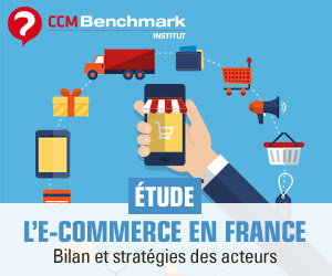 Etude l'e-commerce en France