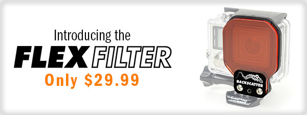 INTRODUCING THE FLEX FILTER! - Underwater System for GoPro