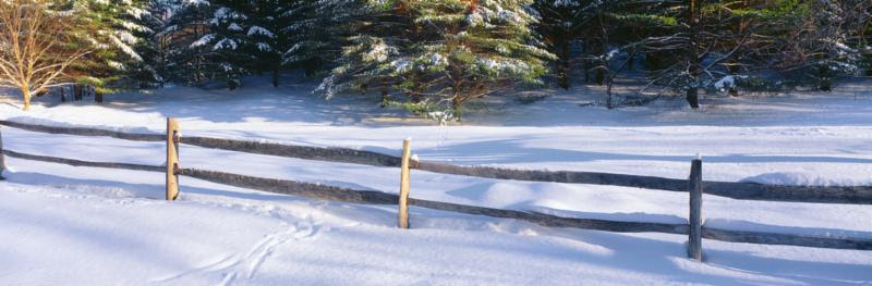 Winter Snow and Fence image