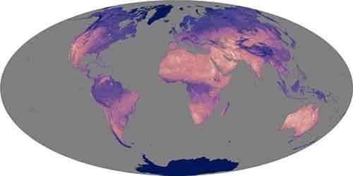 globallstamo20032005lrg