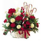 Merry Chrsitmas Basket