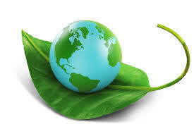 world on leaf