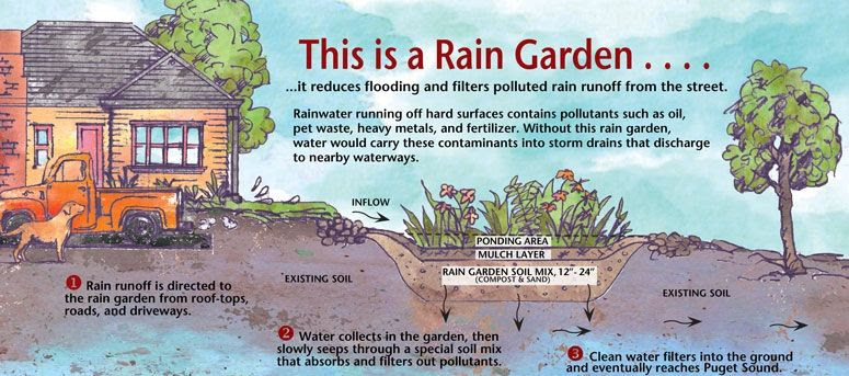 Image result for Rutgers rain garden side view