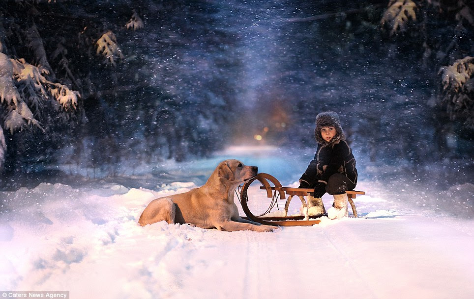Special bond: Five-year-old Yaroslav Shumilova sits on a sledge next to a dog in the snow near his home in Andreapol, Russia
