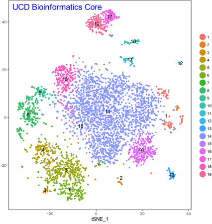 Tsne-plot_single-cell