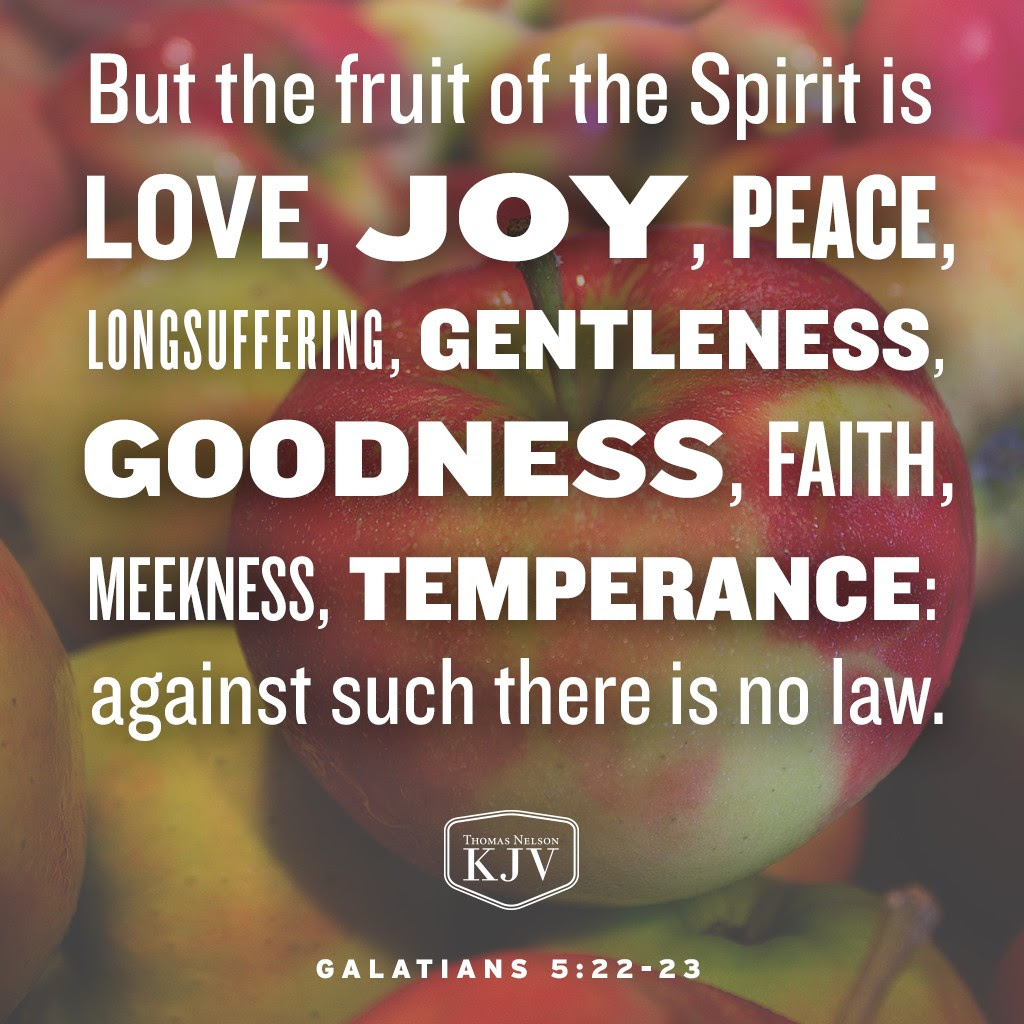22 But the fruit of the Spirit is love, joy, peace, longsuffering, gentleness, goodness, faith,  23 Meekness, temperance: against such there is no law. Galatians 5:22-23
