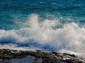 Según la ONU, cada año el mundo usa 500.000 millones de bolsas plásticas. Al menos 8 millones de toneladas de ese material termina en océanos.