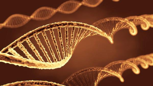 Artist's illustration of DNA molecules.