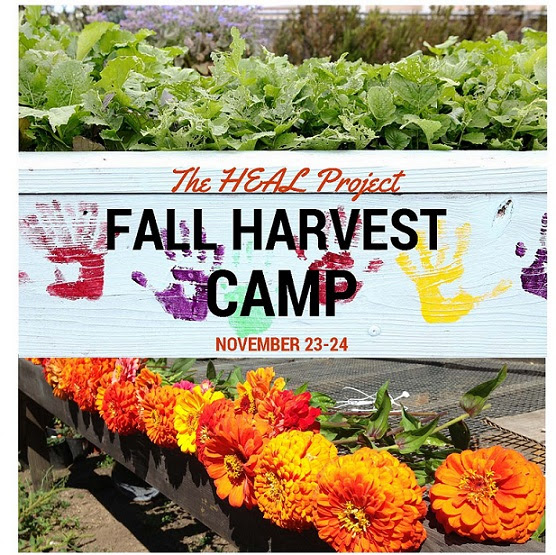 fall harvest camp