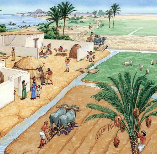 Pyramid, Suez & Egypt