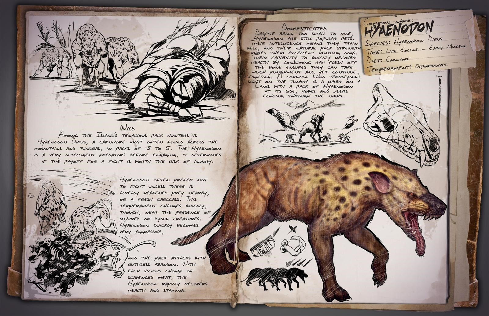 ARK: Survival Evolved - Hyaenodon