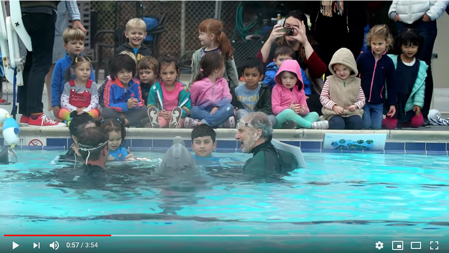 A screen grab of a YouTube video showing the robotic dophin and several children.
