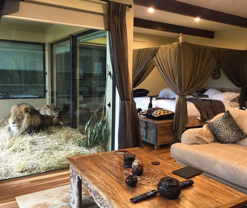 Jamala Wildlife Lodge -  = 5 > 1 K G = K 9  > B 5 ; L  2  7 > > ? 0 @ : 5,    2 A B @ 0 ; 8 O.  $ > B >