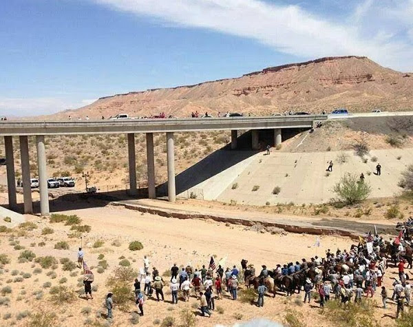 History Made: Feds Surrender to 2nd Amendment in American Citizens at Bundy Ranch Showdown - Citizen Video of Cattle Release