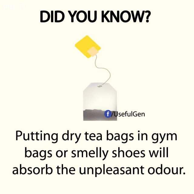 8. Đặt túi trà khô vào túi thể thao hoặc đôi giày nặng mùi sẽ hấp thụ được các mùi khó chịu.,sự thật thú vị,sự thật đáng kinh ngạc,những điều thú vị trong cuộc sống,có thể bạn chưa biết