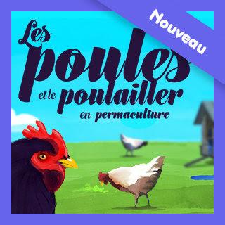 Illustration de la formation « les poules et le poulailler en permaculture »