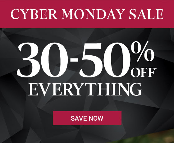 Cyber Monday Sale: Save 30-50% off* everything for a limited time.