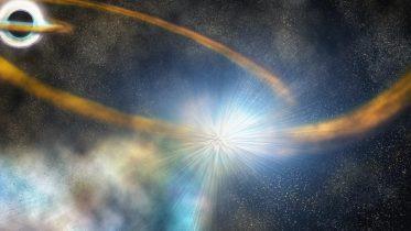 Star Shredded by Black Hole