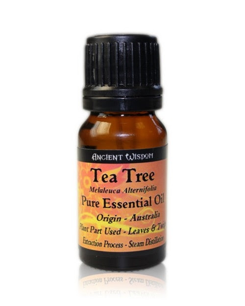 Ulei esential de Tea Tree (Melaleuca Alternifolia), 10ml - Ancient Wisdom