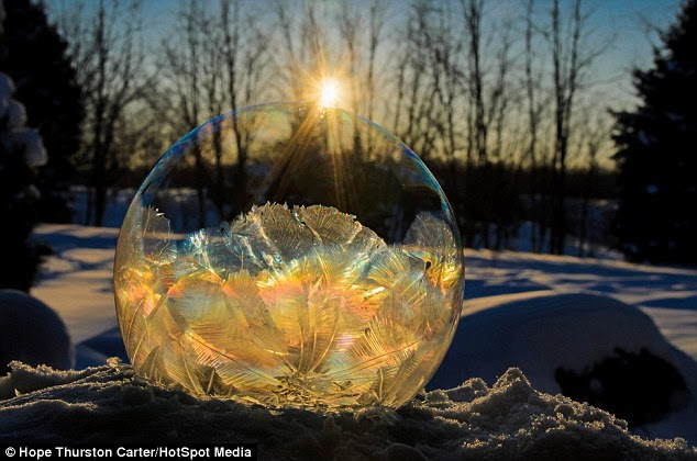 Nature's colours:                                                Golden sunlight makes this                                                frozen soap bubble look                                                like a priceless artefact