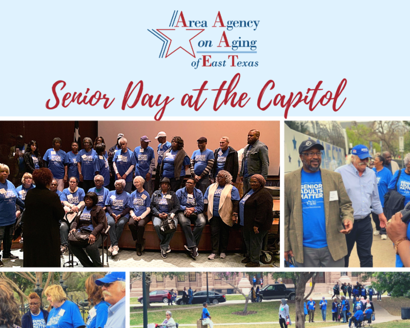 Approximately 40 volunteers met at the capitol to advocate for senior needs. Photos are of groups of volunteers at the Texas Capitol in matching