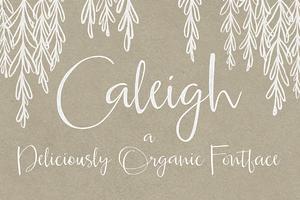 Caleigh Script Font with Bonus