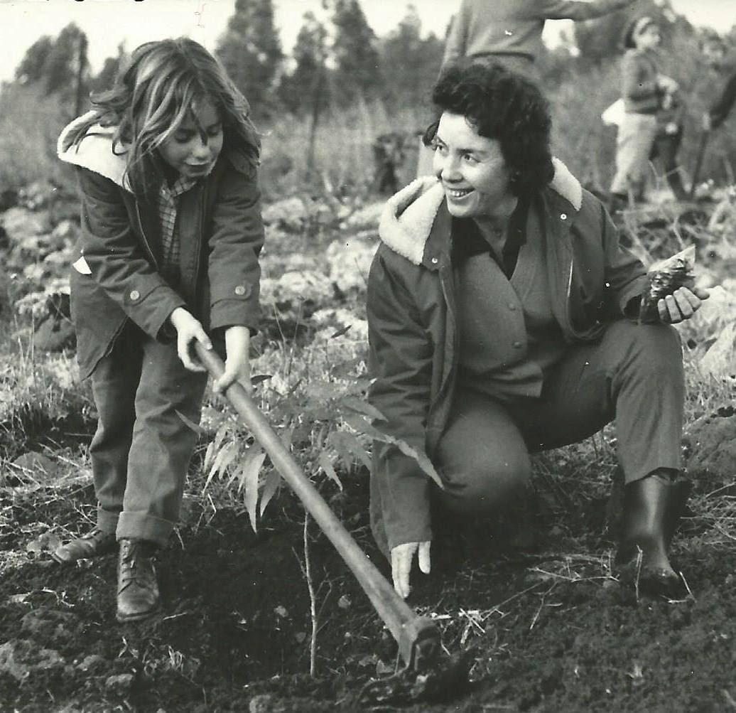 לובה מיכל פרפר, קיבוץ שמיר, שנות ה-60