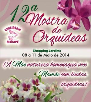 Cartaz - Orquidário Sergipe 2014