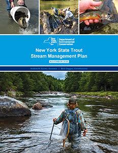 Trout Stream Management Plan