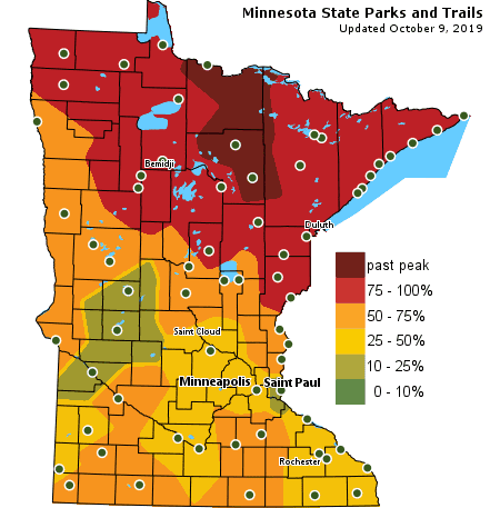 MN DNR map showing fall color throughout the state