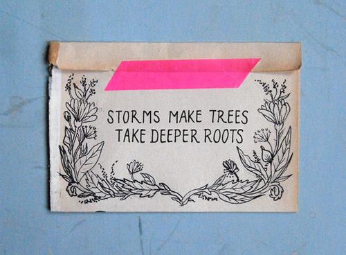 stormmaketreesdeeperrroots