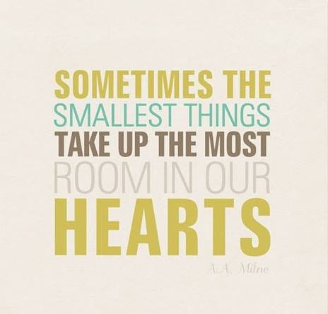 Sometimes the smallest things take up the most room in our hearts. #quotes
