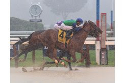 Sky of Hook guts out his first stakes win by a nose in the Rick Violette Stakes at Saratoga Race Course