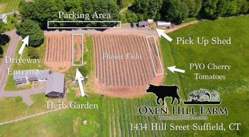 Suffield Farm Map