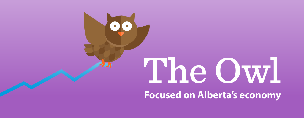 the_owl_email_banner