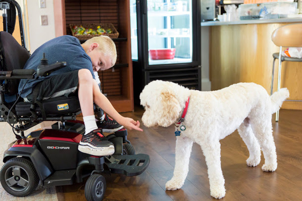 young patient with therapy dog