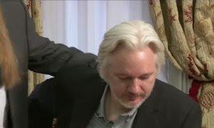 La justicia británica rechaza la extradición de Julian Assange a EEUU por riesgo de suicidio