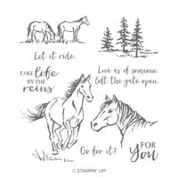 Let It Ride Cling Stamp Set