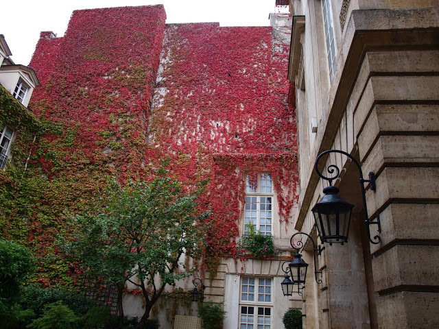 Red climbing vines on Paris Hotel by Hello Lovely Studio