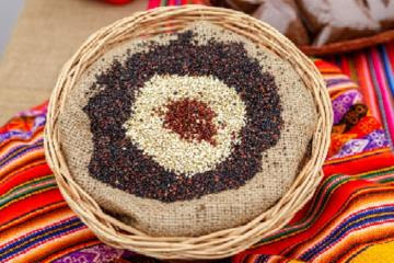 Perú fortalecerá relaciones económicas y comerciales con países árabes e islámicos
