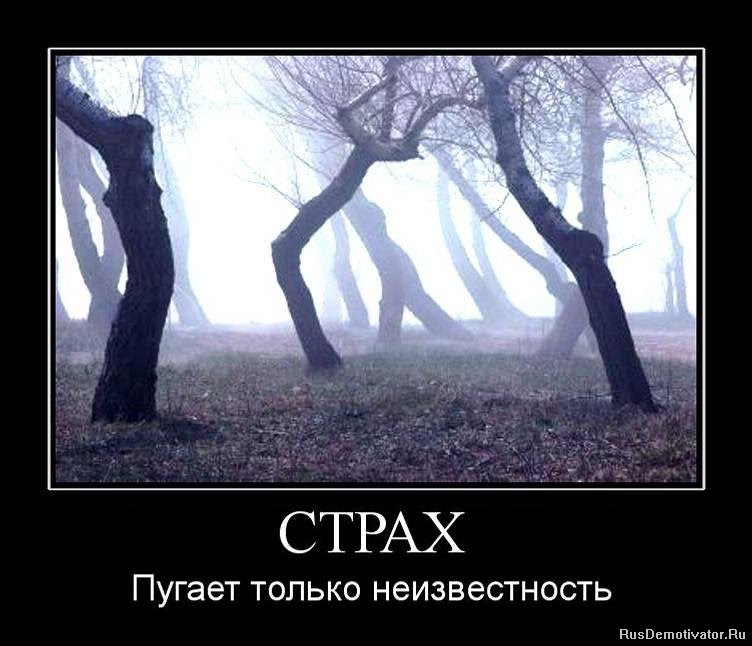 1293711847_415114_strah
