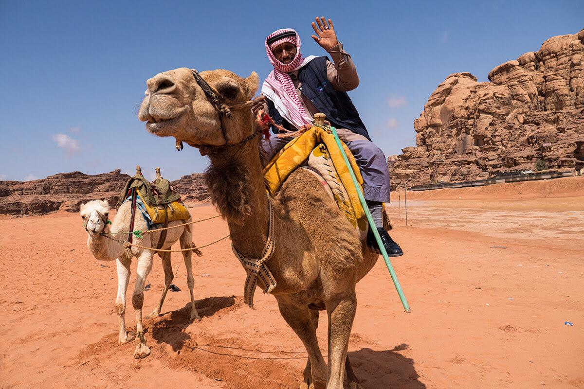 Καμήλα στην Ιορδανία