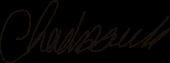 Chad Audi Signature