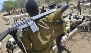 """Nigeria: Muslims vow to """"take this battle across the sea,"""" conquer """"every territory currently occupied by Kafirs"""""""