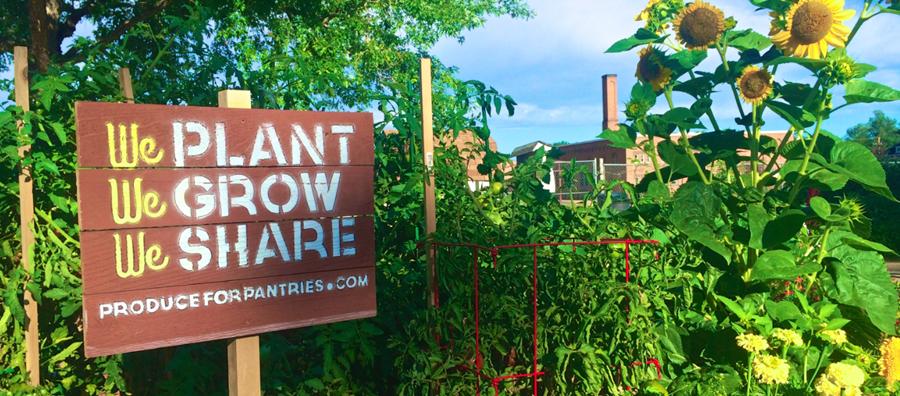 Donating School Garden Produce to Those in Need - Webinar @ Webinar