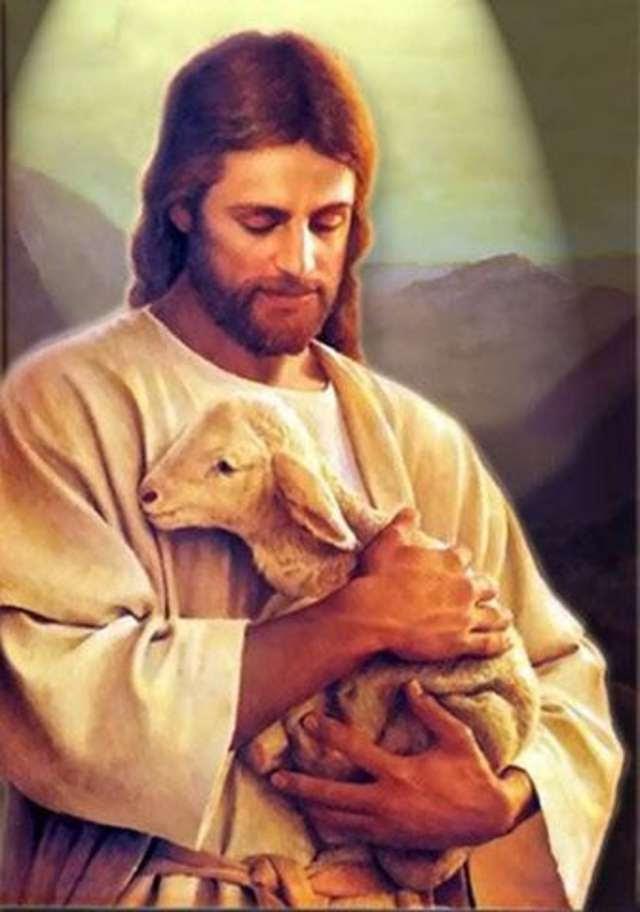 Znalezione obrazy dla zapytania (J 10,27-30) Jezus powiedział: †Moje owce słuchają mego głosu, a Ja znam je. Idą one za Mną i Ja daję im życie wieczne. Nie zginą one na wieki i nikt nie wyrwie ich z mojej ręki. Ojciec mój, który Mi je dał, jest większy od wszystkich. I nikt nie może ich wyrwać z ręki mego Ojca. Ja i Ojciec jedno jesteśmy†.