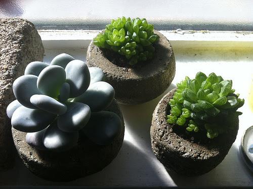 Mini Hypertufa planters