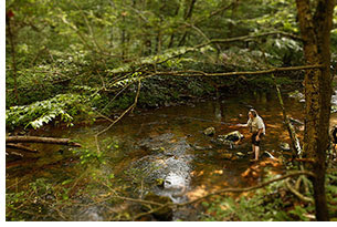 Angler in Jefferson National Forest