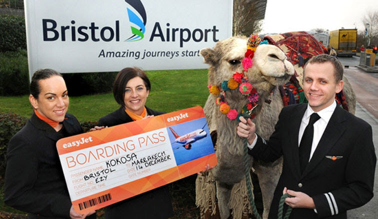 easyJet accounts for almost 6% of all international capacity from Moroccan airports