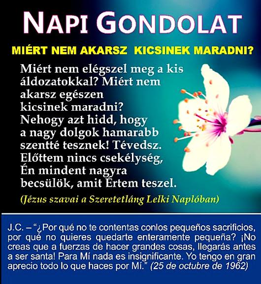 napi_gondolat_743_530.jpg
